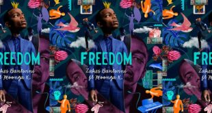 zakes_bantwini_freedom_remix_competition_sho_mag
